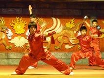 китайское kung fu демонстрации Стоковые Изображения RF