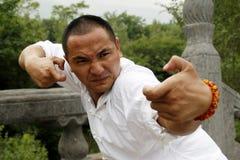 китайское kung fu стоковое фото