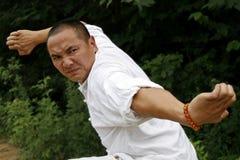 китайское kung fu Стоковое Изображение
