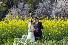 Китайское portraint свадьбы пар в поле цветка Коул Стоковые Изображения