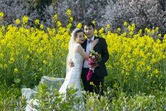 Китайское portraint свадьбы пар в поле цветка Коул Стоковые Фотографии RF