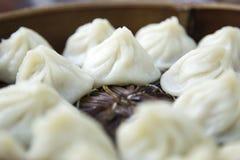 Китайское xiaolongbao тусклой суммы от Шанхая стоковая фотография