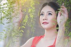 китайско Стоковые Изображения RF