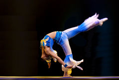 китайцы танцуют самомоднейшая шпага орхидеи стоковое изображение