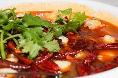 китайцы фасоли закрывают ростки sichuan рыб кухни свежим poached перцем красные вверх Стоковые Изображения
