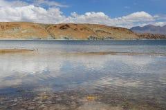 Китай, Тибет, священное озеро для буддистов Manasarovar стоковые фотографии rf