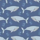 киты Картина вектора безшовная в стиле шаржа Стоковые Фото