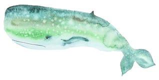 Кит акварели зеленый Стоковое Фото
