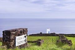 кит вахты башни pico Азорских островов Стоковое фото RF
