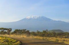 Килиманджаро в Кении Стоковые Изображения RF