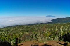 Килиманджаро, трасса Machame Стоковые Фотографии RF