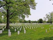Кладбище Арлингтона стоковые фотографии rf