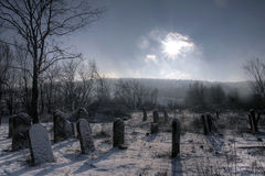 кладбище еврейское Стоковые Фото