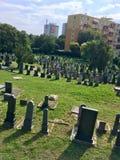 Кладбище в городе стоковые фотографии rf