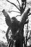 Кладбище Нью-Джерси Rahway Стоковое Изображение