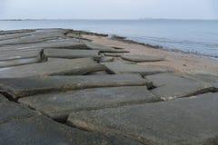 Кладбище Сьюзан Hoi раковины Krabi стоковые фотографии rf
