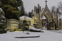 Кладбище холма леса стоковые фотографии rf