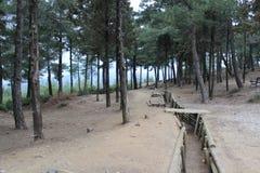Кладбище Chunuk Bair стоковое фото rf