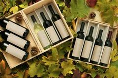 кладет вино в коробку подарка 2 Стоковые Фото