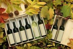 кладет вино в коробку подарка 2 Стоковое Изображение