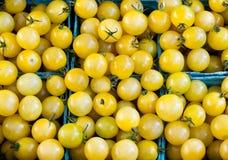 кладет желтый цвет в коробку томатов пинты вишни Стоковое Изображение RF