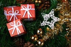 кладет красный цвет в коробку сосенки подарка ели конусов нескольк вал Стоковая Фотография