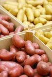 кладет новые картошки в коробку деревянные стоковая фотография