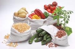 кладет овощи в мешки Стоковые Фотографии RF