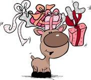 кладет северный оленя в коробку подарка Стоковые Фото