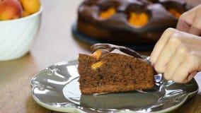Кладущ в плиту часть шоколадного торта с абрикосами сток-видео