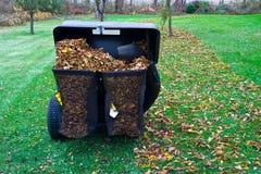Кладя в мешки листья Стоковое Изображение