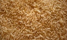классицистический длинний рис Стоковое Изображение