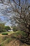 Классицистический дом год сбора винограда белого цемента дня Стоковая Фотография