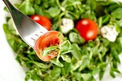 классицистический овощ салата Стоковое фото RF