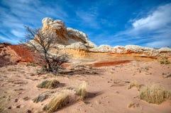 Классическая белая карманная Vermillion сцена песчаника национального монумента скал стоковые изображения rf