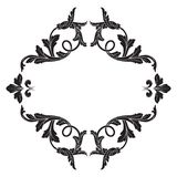 Классический барочный вектор орнамента Стоковые Фотографии RF
