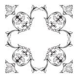 Классический барочный вектор орнамента Стоковое фото RF