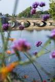Классический французский мост около голубого реки через некоторые розовые цветки Стоковая Фотография RF