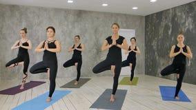 Класс и инструктор фитнеса стоя в дереве представляют на студии тренировки Стоковое Изображение