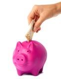 класть дег руки банка piggy розовый Стоковое Изображение