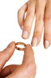 класть кольцо Стоковое Фото