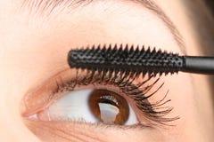 класть mascara Стоковые Изображения RF