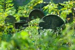 кладбище еврейское Стоковое Изображение RF