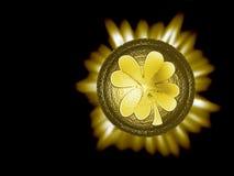 клевер 4 leaved Стоковая Фотография RF