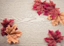 Кленовые листы на деревянной предпосылке текстуры Стоковая Фотография