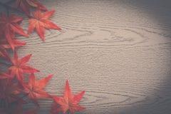 кленовые листы на деревянной текстуре в винтажном стиле Стоковое фото RF