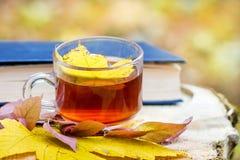 Кленовый лист в чашке чаю, которая стоит в древесинах на пне рядом с book_ стоковые фото