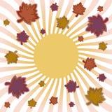 клен листьев взрыва осени Стоковая Фотография RF