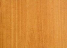 клен formica предпосылки Стоковое Изображение