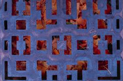 Клетка осени стоковые фотографии rf